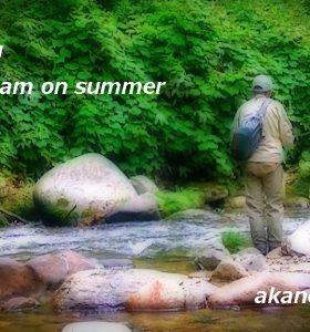 渓流の釣Youtubeにアップしました
