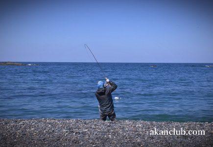 湖タックルで狙う極太海アメマス