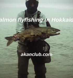 salmon flyfishing 動画をアップしました