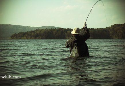6月の阿寒湖はユスリカでスタート