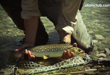 阿寒湖の新仔の釣・・のつもりで行きました