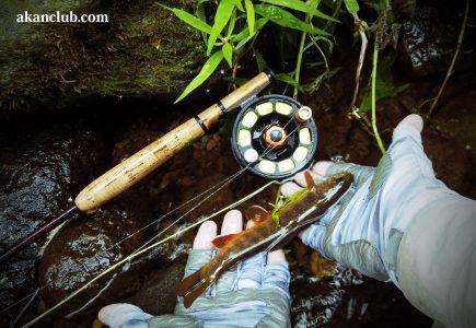 本日6時30分公開水中映像4Kオショロコマの釣